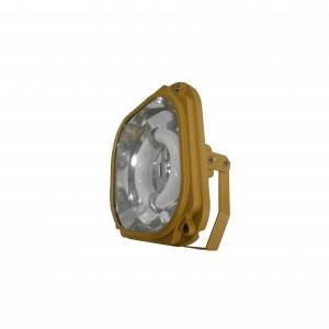 Explosion proof induction lamps